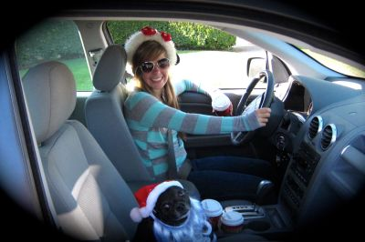 December - Someone is learning to drive.